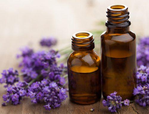 Qu'est-ce que l'aromathérapie?